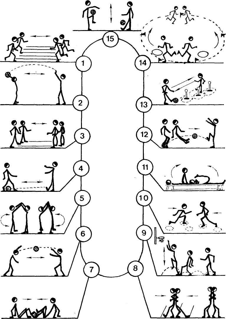 Фитбол комплексы упражнений в картинках