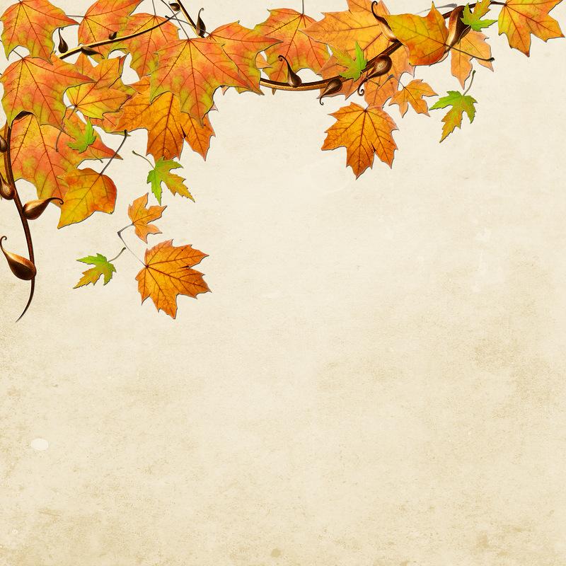 Картинки для презентации по теме осень