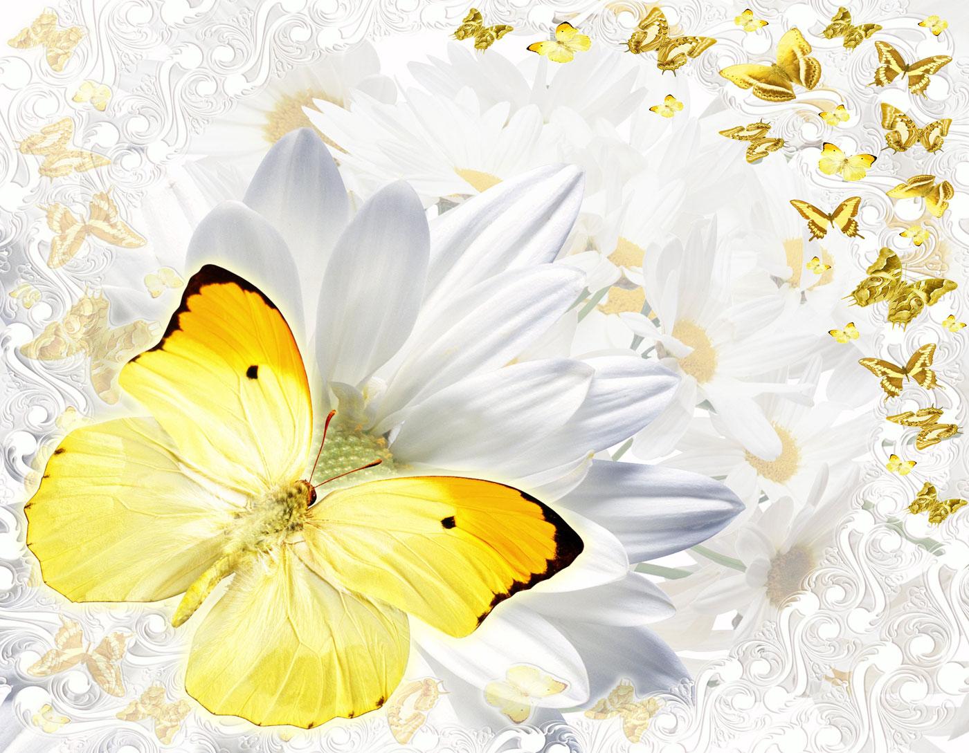 Открытки удачного дня с бабочками, легкие