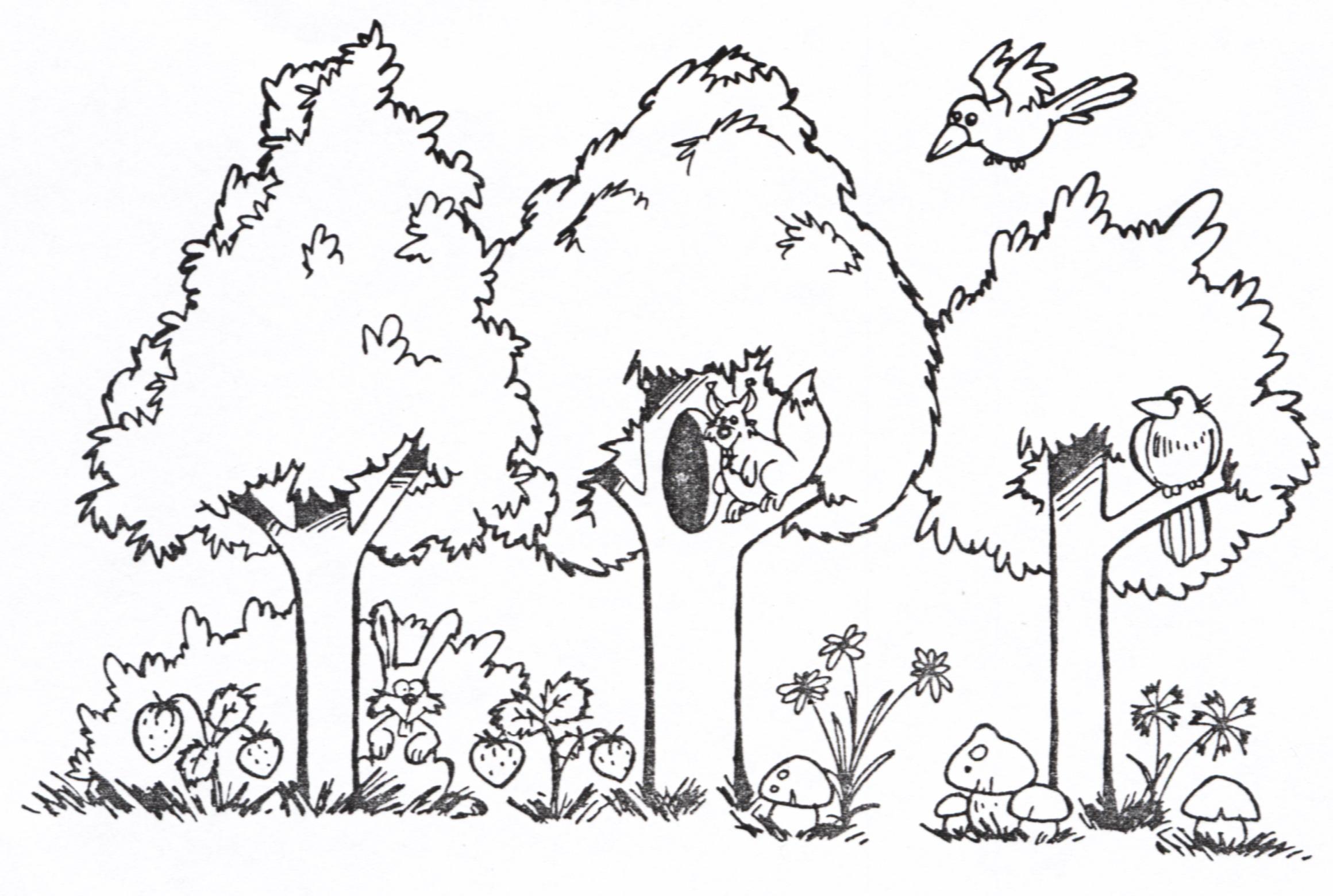 можете ознакомиться картинки раскраски лесных деревьев сознательно переводила